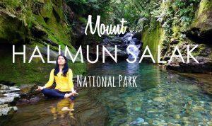 Secret Waterfalls in Halimun Salak National Park