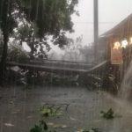 Hujan Angin di Depok: Hujan Es, Pohon Tumbang, Reklame Roboh!