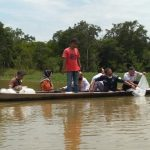 Ribuan Benih Ikan Jelawat Ditebar di Sungai Pengumbak Desa Petaling