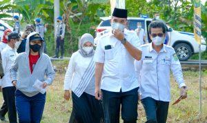 Titip Pesan Panen Perdana Program PSR Untuk Presiden Jokowi